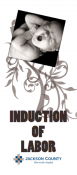 Induction of Labor Brochure